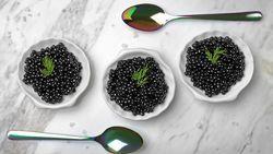 Terancam Punah, Lalu Kenapa Kaviar Masih Dijual?