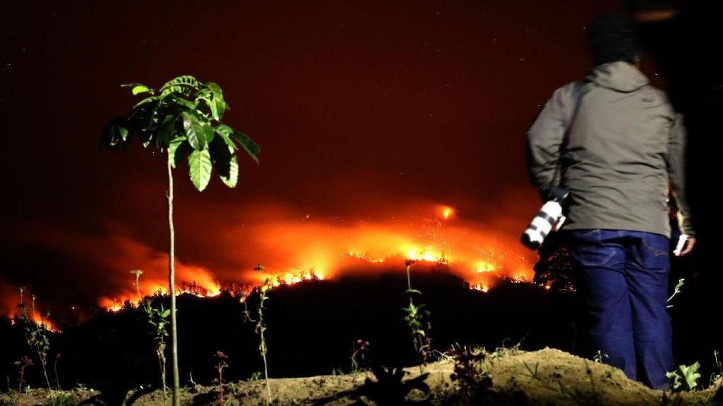 Imbas Kebakaran Hutan di Sumatera, Produksi Gas RI Anjlok