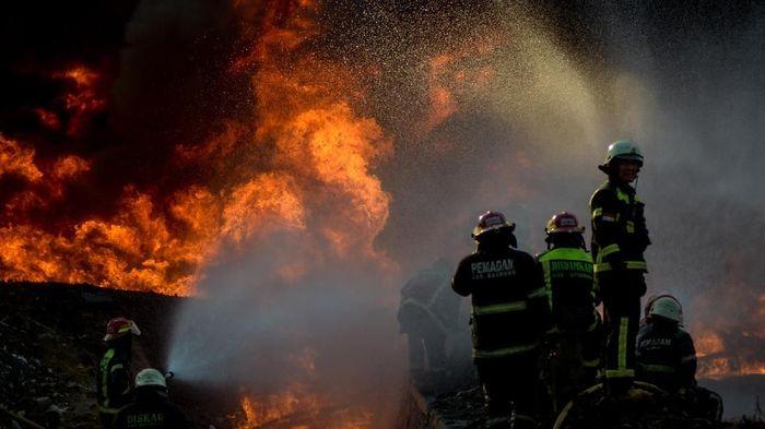 Foto: Antara Foto/Raisan Al Farisi