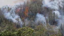 Kebakaran di Gunung Bawakaraeng Sulsel Merambat ke Lembah Ramma