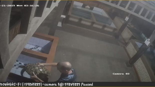 Heboh Bule Terekam CCTV Lompat Pagar Curi Belasan Penyu di Sanur