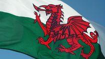 Naga-naga di Bendera Negara, Keren tapi Beda-beda
