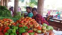 Papua Nugini Akan Mulai Ekspor Produk Pertanian ke Indonesia Akhir Tahun Ini