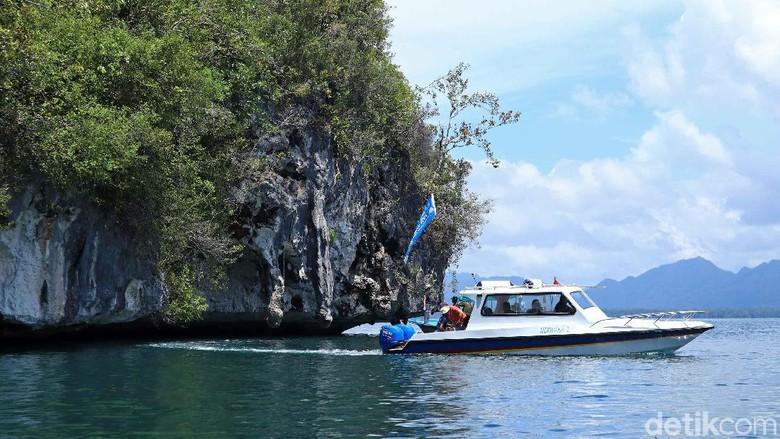 Teluk Mayalibit di Raja Ampat (Randy/detikcom)