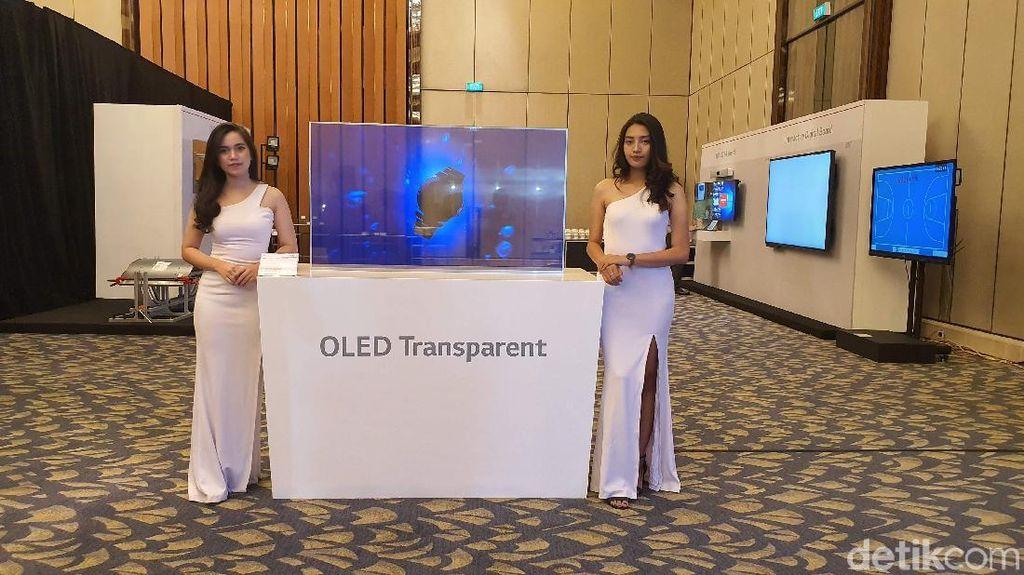 Inilah LG OLED Transparent. Foto: Adi Fida Rahman/detikINET