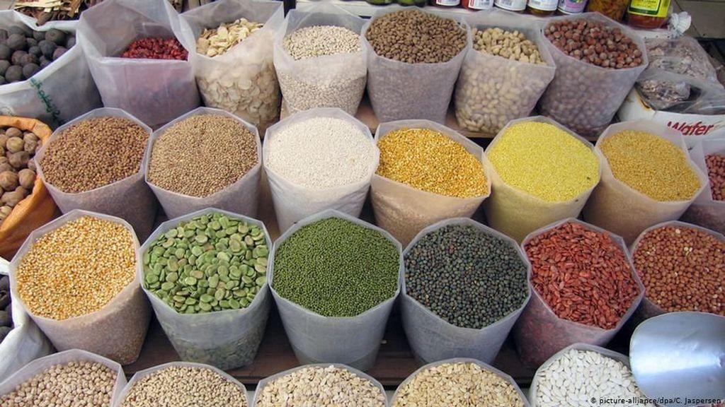 Deretan Jenis Sayuran yang Bisa Jadi Alternatif Menggantikan Daging
