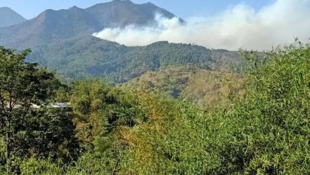 Sempat Padam, Gunung Malabar Bandung Kembali Terbakar
