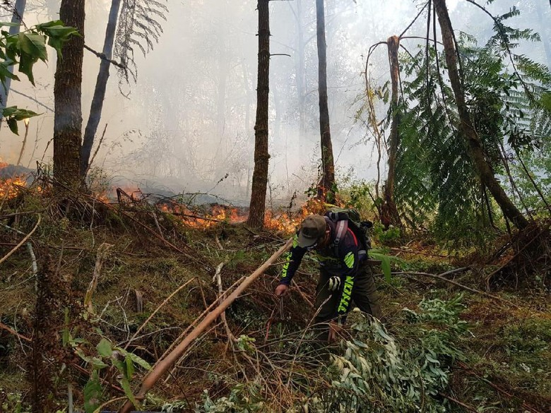Kebakaran Hutan di Gunung Ciremai, Jalur Pendakian Masih Ditutup