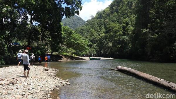 Tiba di tepi sungai, traveler pun harus kembali melanjutkan perjalanan dengan trekking ke dalam hutan selama sekitar 15 menit berjalan kaki. Sebelum menyusuri hutan, traveler akan lebih dulu disambut dengan sungai dangkal (Randy/detikcom)