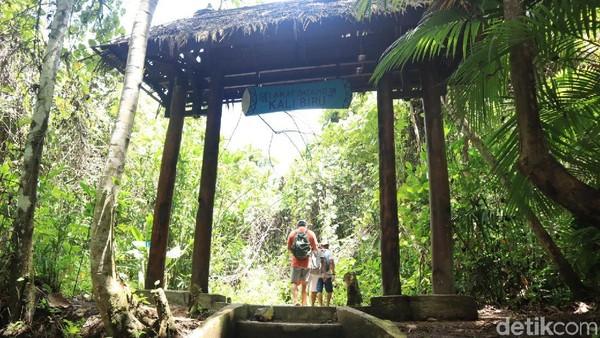 Masuk ke dalam hutan, traveler akan disambut oleh gerbang masuk dengan tulisan penanda Kali Biru (Randy/detikcom)