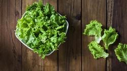 7 Sayuran untuk Diet Terbaik, Enak dan Cepat Turunkan Berat Badan