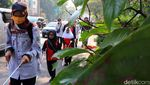 Puluhan Difabel Gelar Aksi Jalan Kaki di Kota Bandung