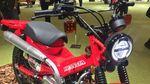 Boleh Juga Nih! Motor Bebek Baru Honda yang Cocok Buat Off-road