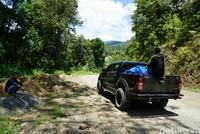Jokowi menyampaikan permintaan bupati hingga gubernur akan pengaspalan jalan antara Manokwari dan Pegunungan Arfak segera selesaikan. Warga melintas menumpang mobil 4X4 (Ahmad Masaul Khoiri/detikcom)