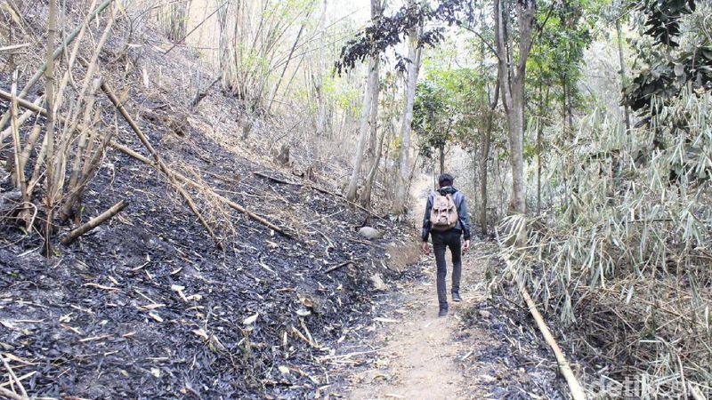 Di Kelurahan Leuwigajah, Cimahi Selatan, Kota Cimahi terdapat sebuah situs yang disakralkan oleh masyarakat Kampung Adat Cireundeu. Namanya Puncak Salam.(Yudha/detikcom)
