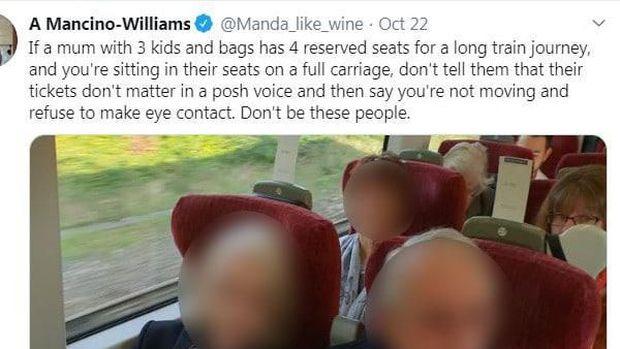 Sepasang Penumpang Akui Tempat Duduk Wanita Hamil di Kereta
