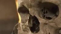 Ini tengkorak asli manusia. Seniman yang menyusun tengkorak-tengkorak ini bernama František Rint (iStock)