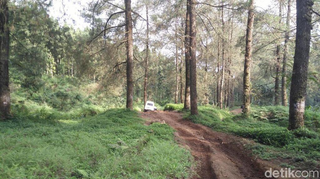 7 Destinasi Wisata nan Indah di Purwokerto