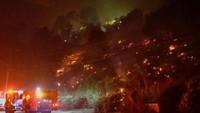 Di bagian ujung utara Brentwood, satu cluster rumah-rumah seharga jutaan dolar AS hancur menjadi puing akibat kebakaran hutan ini. Dekorasi bertemakan Halloween yang marak dipasang di rumah-rumah warga ikut meleleh akibat kebakaran ini. Foto: REUTERS/Gene Blevins
