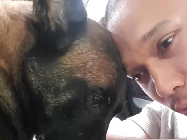 Sesenggukan Bima Aryo Melihat Kematian Anjing Sparta