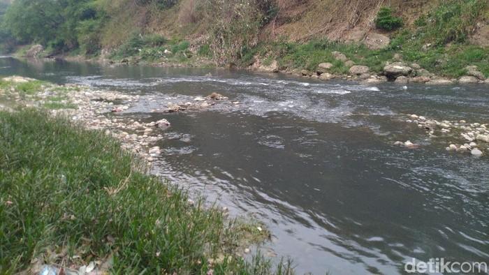 Sungai Cileungsi dipotret Selasa (29/10/2019). (Sachril Agustin Berutu/detikcom)