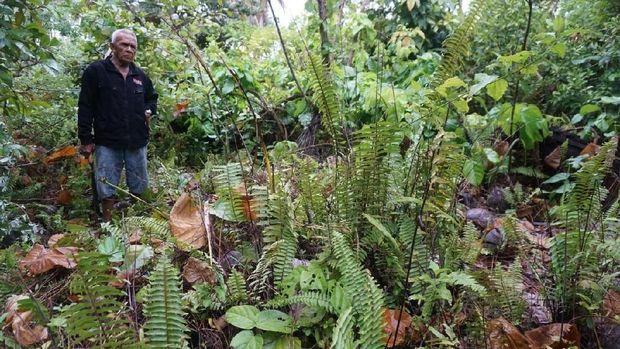 Misteri Harta Karun Terkubur Milik Vietnam di Tanah Natuna