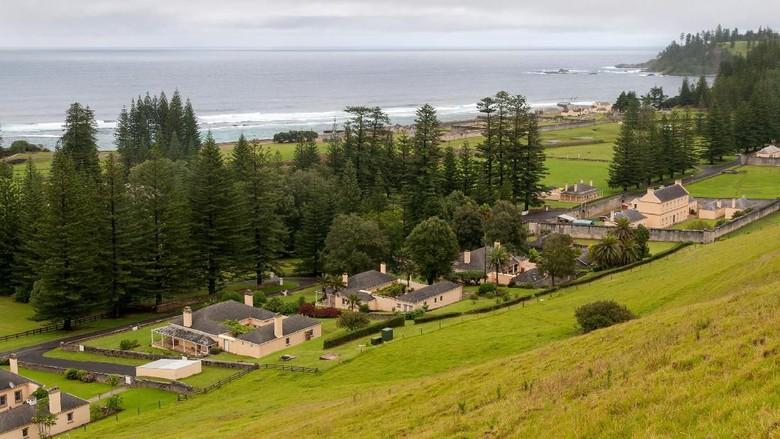 Foto: Ilustrasi Norfolk Island (iStock)