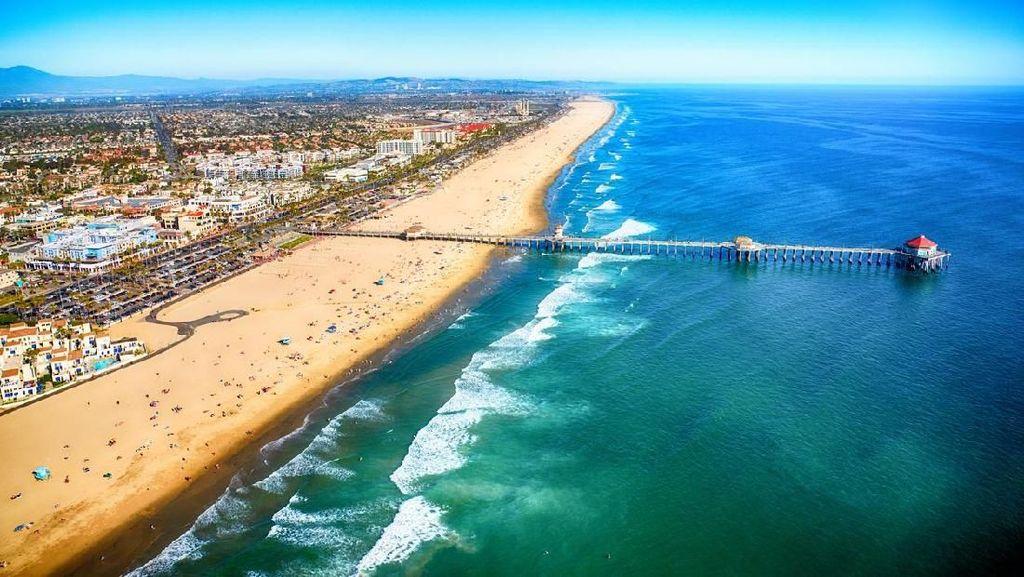Horor di Pantai California: 176 Orang Tersengat Ikan Pari