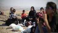 ISIS Pergi, Warga Kurdi Rayakan Maulid Nabi