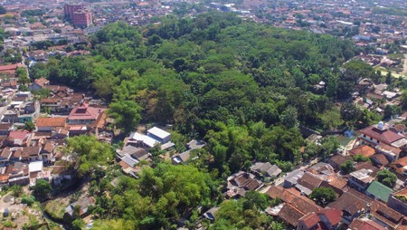 Hutan Mini Jantung Kota Jogja