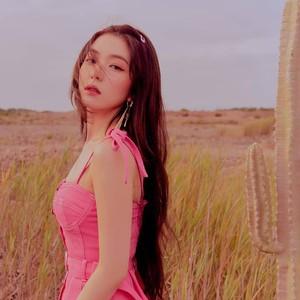 Irene Red Velvet Minta Maaf karena Perlakuan Kasar, Ini Kronologi Kasusnya