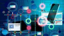Palapa Ring dan Terbentuknya Digital Society