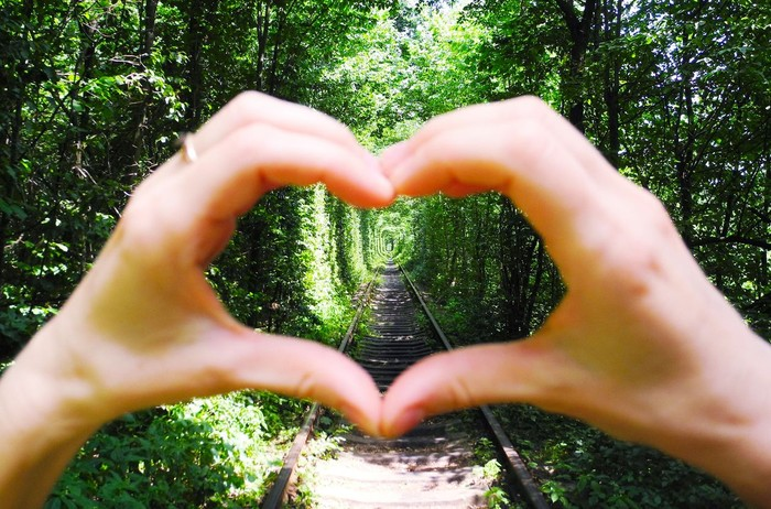 Symbol of heart on the background of tunnel of love.