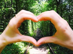 20 Kata-kata Cinta yang Menyentuh, Bijak Hingga Romantis