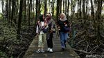 Menengok Taman Mangrove di Tarakan yang Terbengkalai