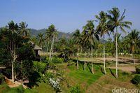 Di Bali, Foodies Bisa Makan Enak dan Belajar Bikin Kopi di Sini