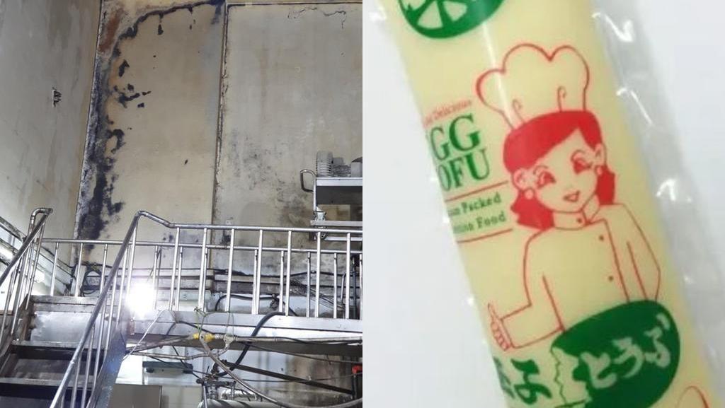 Hii..! Jadi Sarang Kecoa, Pabrik Tahu Ini Kena Denda Rp 31 Juta