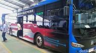 Bali Bakal Punya Bus Listrik, Mulai Lelang Tender Tahun Depan