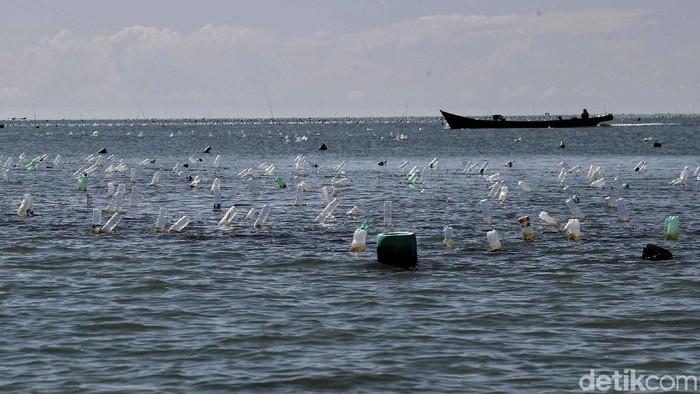 Rumput laut menjadi komoditas utama warga Desa Mamolo, Kabupaten Nunukan, Kalimantan Utara. Yuk kita lihat proses budidayanya.