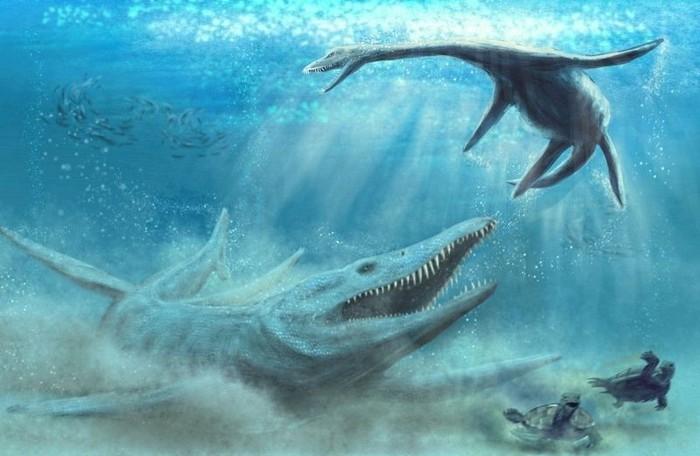 Pliosaurus. Foto: Science in Poland