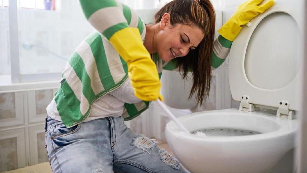 Hal Menjijikkan Ketika Menyiram Toilet