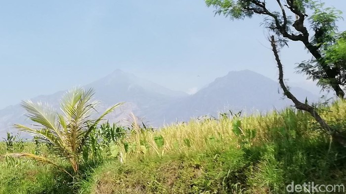 Gunung Arjuno-Welirang/Foto: Muhajir Arifin