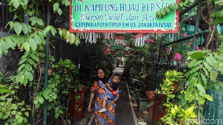 Kampung Hijau Berseri, Oase Menyejukkan di Pusat Kota Jakarta