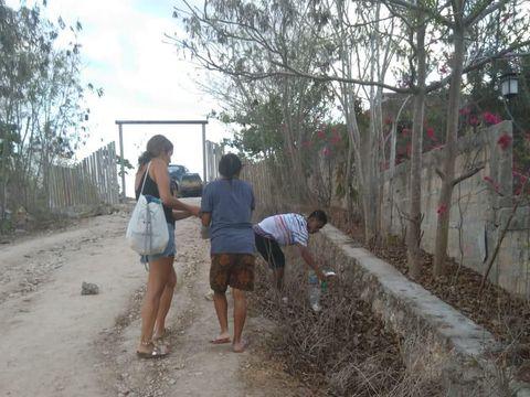 Patut Ditiru, Bule Ini Punguti Sampah di Pantai Sumba