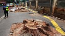 Ketua DPRD DKI Minta Pemprov Hentikan Pemotongan Pohon Seperti Cikini