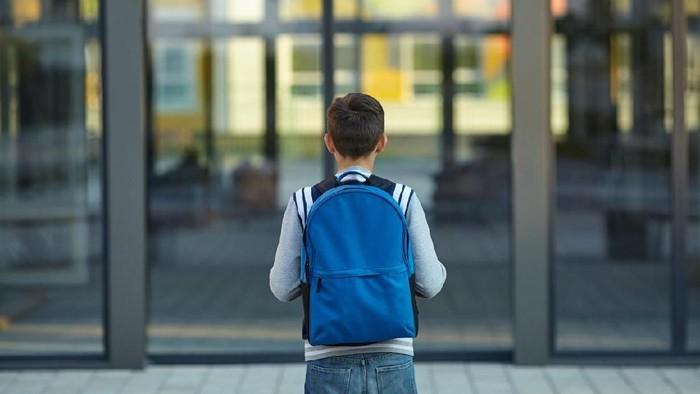 Schoolboy stands in front of the school door. Back to school.
