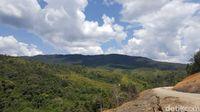 Pemandangan di jalur perbatasan Long Bawan (Syanti/detikcom)