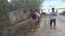 Patut Ditiru Nih, Ada Bule Punguti Sampah di Pantai Sumba