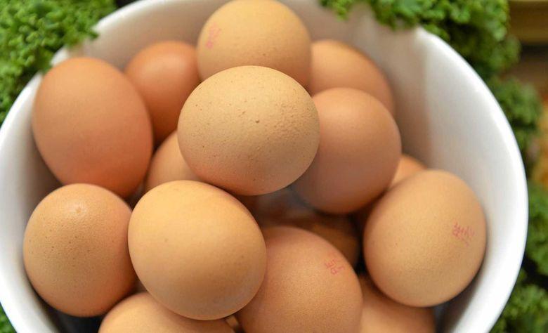 Meninggal Makan Telur