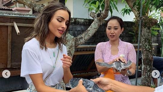 Usai Foto Berani, Olivia Culpo Main Penyu di Bali